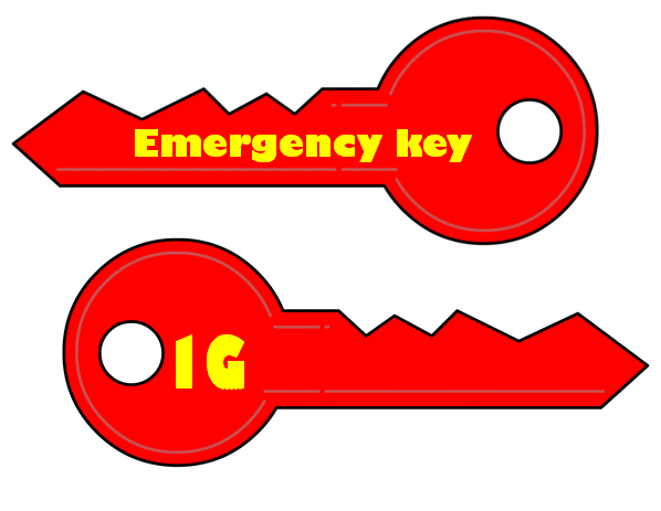 emergency key sample
